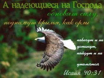 В Донецке возобновились боевые действия, все грохочет, как в самые напряженные дни января, - Казанский - Цензор.НЕТ 7848