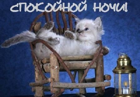 http://img1.liveinternet.ru/images/attach/c/0//42/675/42675719_1.jpg