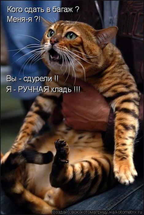 http://img1.liveinternet.ru/images/attach/c/0//42/861/42861473_1240336929_image001.jpg