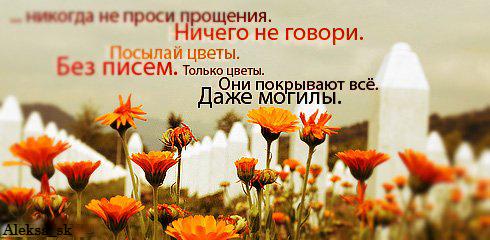 http://img1.liveinternet.ru/images/attach/c/0//43/196/43196086_1241010889_5.jpg