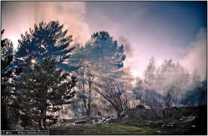 Пожары на Селигере