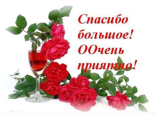 http://img1.liveinternet.ru/images/attach/c/0//44/393/44393846_26212845_spasibo_bolshoeweb.jpg