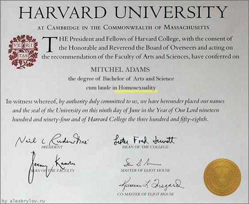 Выпускник кафедры гомосексуализма в Гарварде