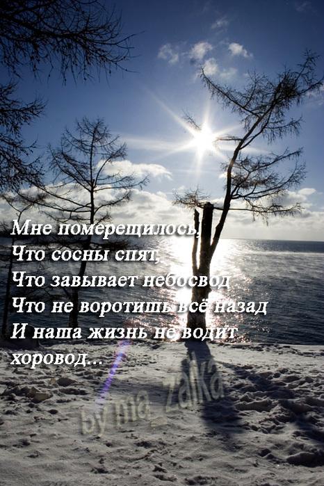 �����: ma_zaika (����� �������)