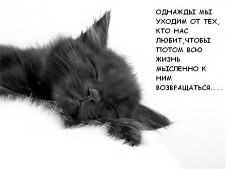 грустный аватар: