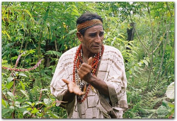 Церемония Аяуаска. Путевые записки. Амазонские джунгли. Перу 2004.