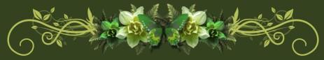 2009-07-18_203107 (463x86, 13Kb)