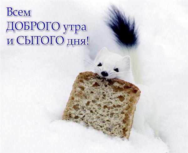 http://img1.liveinternet.ru/images/attach/c/0//46/791/46791605_1248665757_a0de1d85e682.jpg