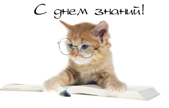 http://img1.liveinternet.ru/images/attach/c/0//47/519/47519698_x_12ec1d4f.jpg