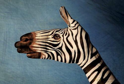 Фигуры животных сделанные из пальцев рук!. Обсуждение на ...