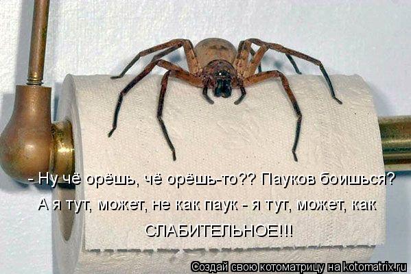 http://img1.liveinternet.ru/images/attach/c/0//47/895/47895574_98177fd44b5631124d91b3d81aa3f64a.jpg