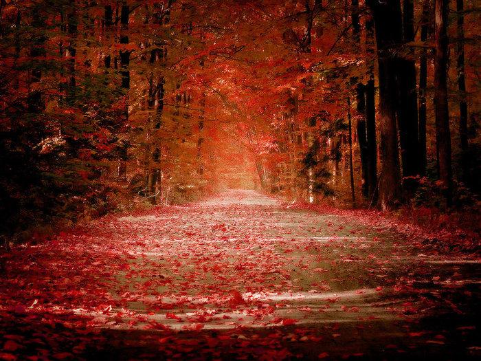 Autumn_by_sican (700x525, 174Kb)
