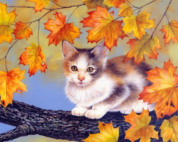Замурчательные котики от Jane Maday