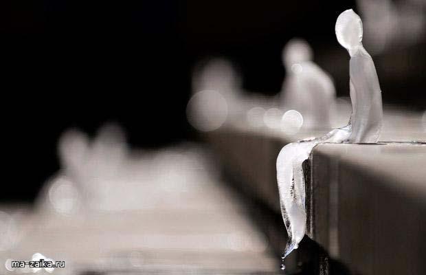 Ледовые скульптуры напоминают о таянии ледников