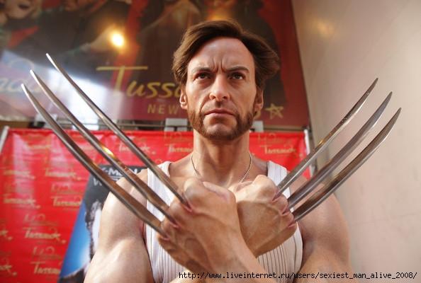 http://img1.liveinternet.ru/images/attach/c/0//48/358/48358687_HughJackmanWolverineWaxFigureReceivesbgq3V9nLrBvl_1.jpg