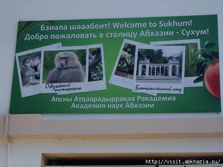 Сухум Обезьяний питомник Ботанический сад  Абхазия Туры в Абхазию visit.abkhazia.su