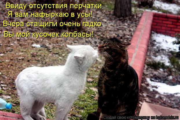 1251450204_04_3V (622x414, 124Kb)