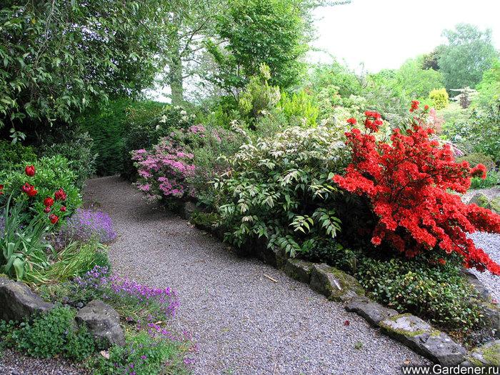 Цветочные клумбы в саду фото
