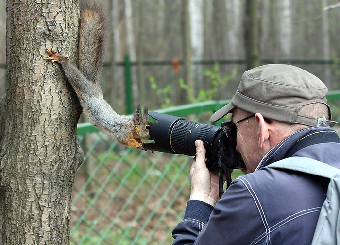 белка и фотограф