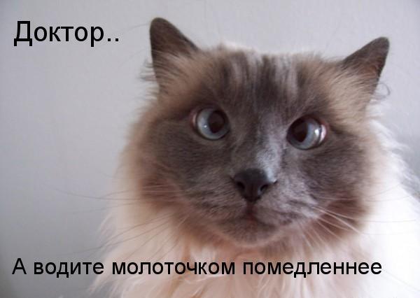 http://img1.liveinternet.ru/images/attach/c/0//51/844/51844311_008.jpg