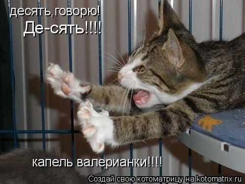 http://img1.liveinternet.ru/images/attach/c/0//51/845/51845407_x_a476719d.jpg