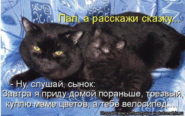 http://img1.liveinternet.ru/images/attach/c/0//52/454/52454611_49c5fac68d3a.jpg