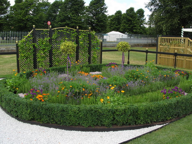 Сады шести жён Генриха VIII в Хэмптон-корте 52232