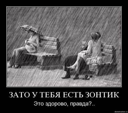 52693585_1261336447_52166503_zontik.jpg