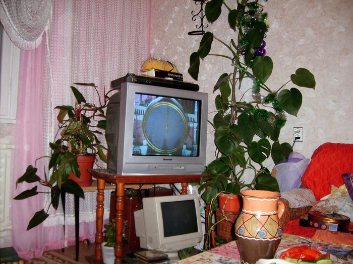 новый год, телевизор, праздник, куранты