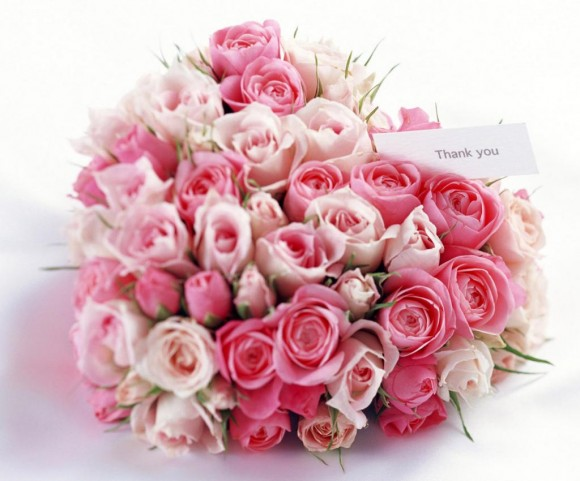 цветы (580x481, 57Kb)