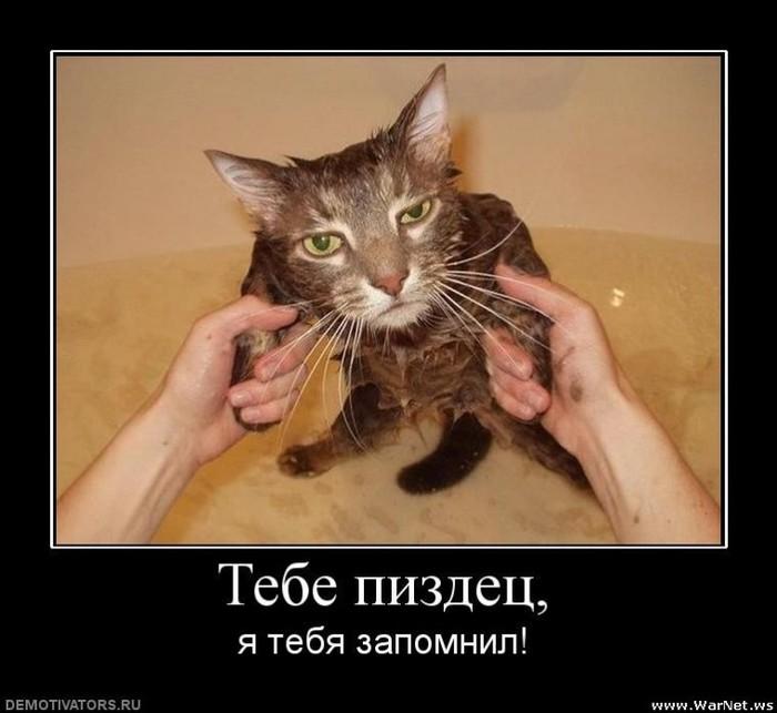 http://img1.liveinternet.ru/images/attach/c/0//53/387/53387843_1262738683_3847680_575cd6e6.jpg