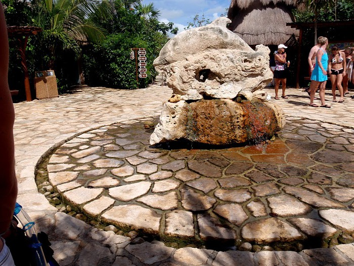 Парк Xel-Ha в Мексике 36814