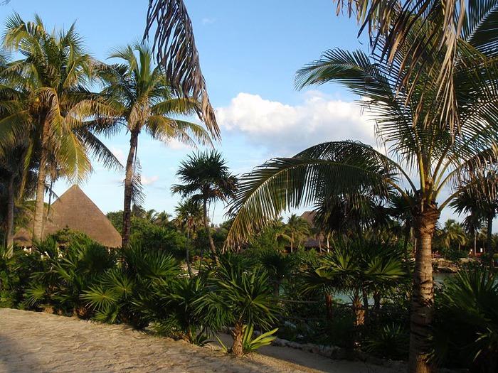 Парк Xel-Ha в Мексике 48331