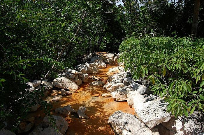 Парк Xel-Ha в Мексике 22817