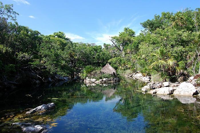 Парк Xel-Ha в Мексике 20464