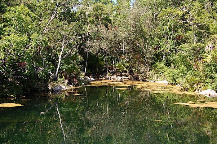 Парк Xel-Ha в Мексике 85741