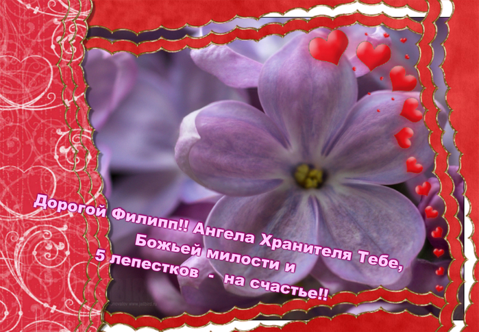 http://img1.liveinternet.ru/images/attach/c/0/112/512/112512531_large_VipTalisman82.jpg
