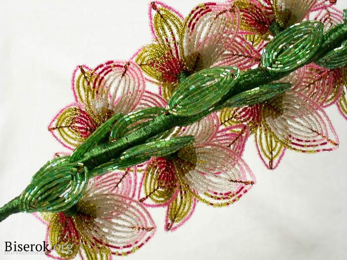 Цветы из бисера. ГЛАДИОЛУСЫ. Мастер-класс (10) (700x525, 444Kb)