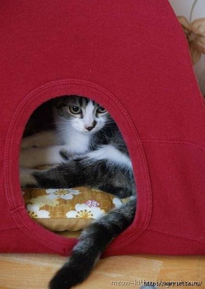 домик для кошки из вешалок и футболки (9) (424x597, 119Kb)