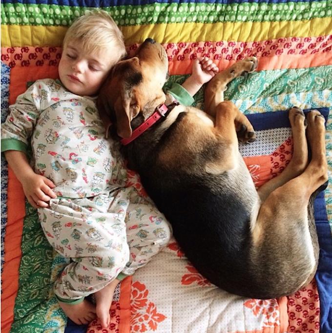 дети и животные фото 1 (680x682, 847Kb)
