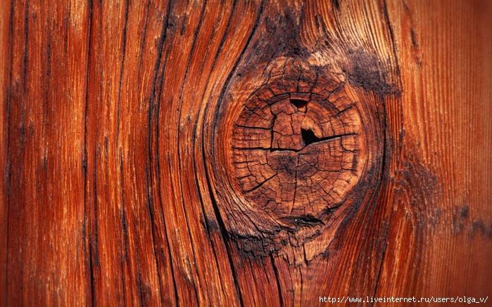 wood-texture-006 (700x437, 335Kb)