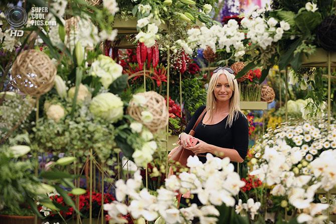 фестиваль цветов в лондоне фото 12 (670x447, 336Kb)