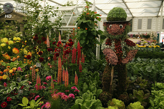фестиваль цветов в лондоне фото 119 (670x447, 429Kb)
