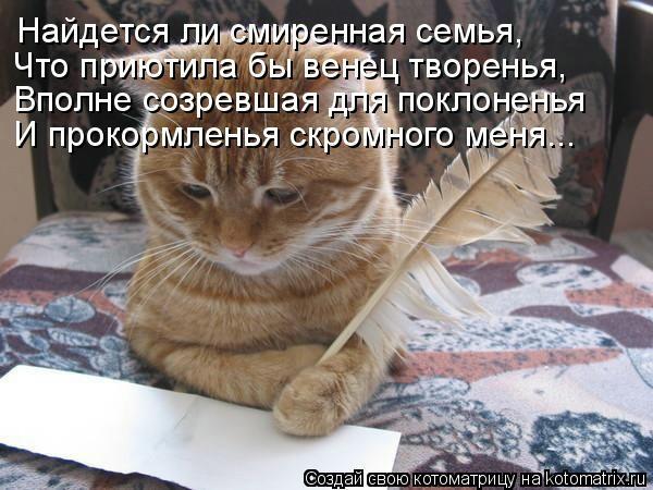 kotomatritsa_JI (600x450, 153Kb)