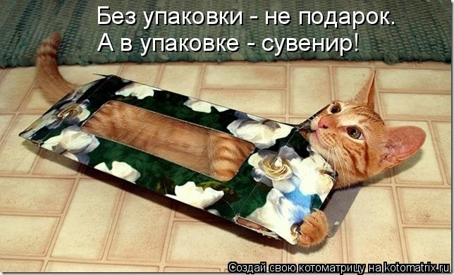 kotomatritsa_L7 (644x390, 141Kb)