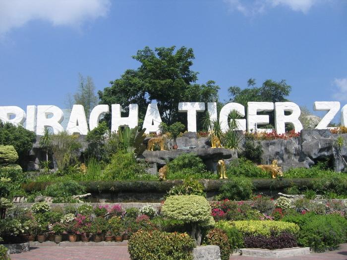 тигровый зоопарк в таиланде фото 1 (700x525, 419Kb)