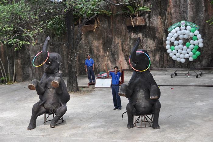 тигровый зоопарк в таиланде фото 8 (700x465, 352Kb)