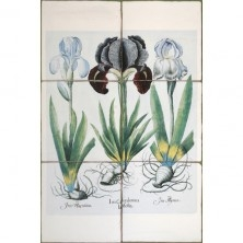 Элитная плитка для ванной от компании Johnson-Tiles (1) (222x222, 27Kb)