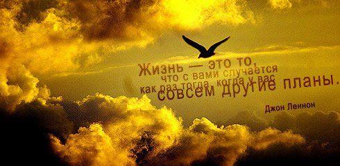 1343360211_tsitatj1 (490x240, 156Kb)