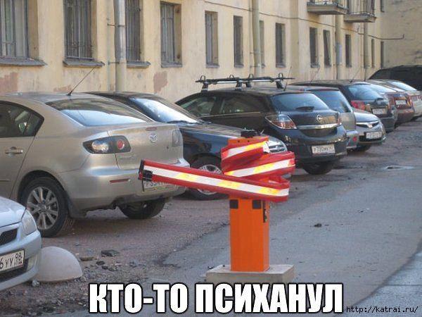 smeshnie_kartinki_140081200750 (600x450, 156Kb)